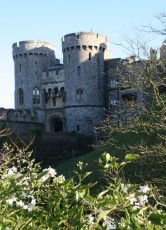 Windsor Castle VIII