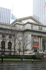 New York Public Library III