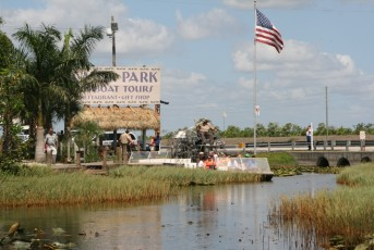 Everglades-Tour mit Airboat und Alligatoren XII