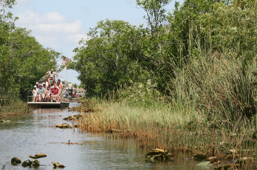 Everglades-Tour mit Airboat und Alligatoren X