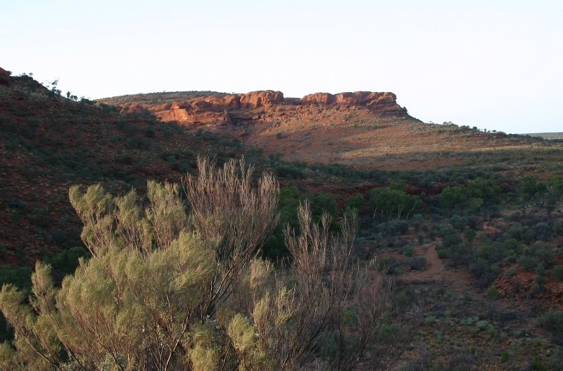 Outback-Trip: Kings Canyon Rim Walk I
