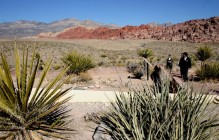 Red Rock Canyon I