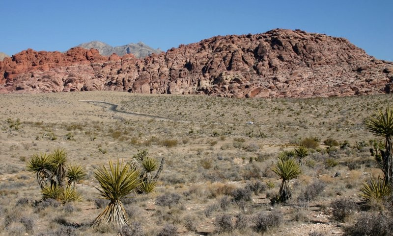 Red Rock Canyon IV