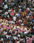 HK Sevens: Rugby in Hong Kong XIV