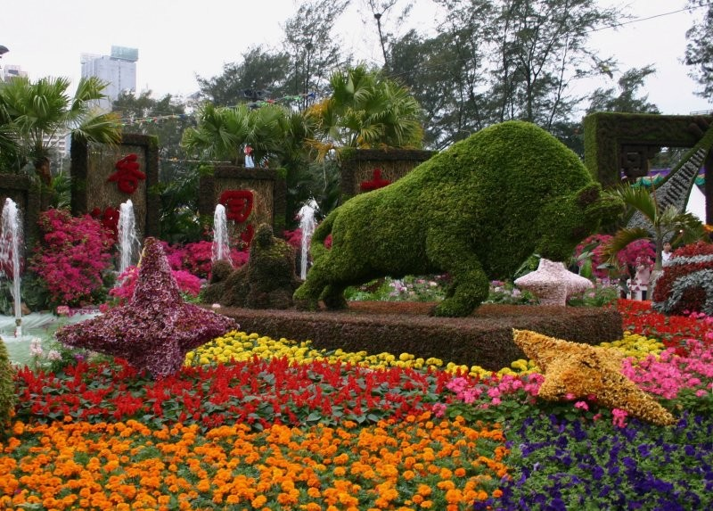 Hong Kong Flower Show V
