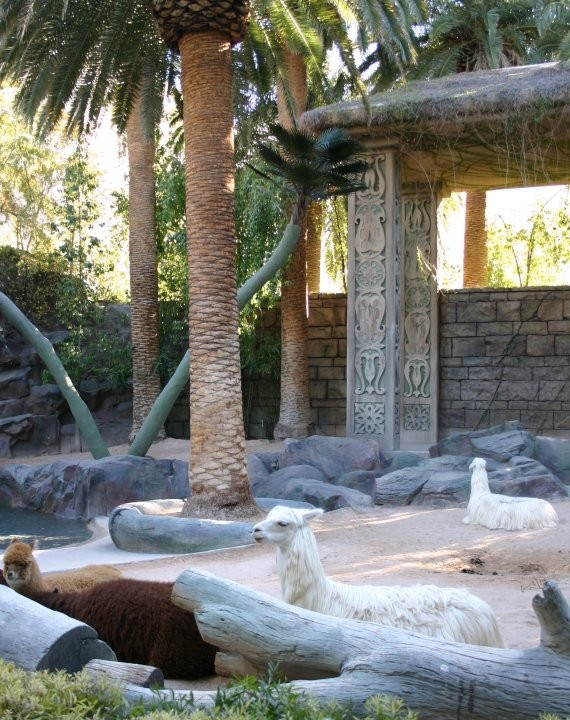Mirage Dolphins & Secret Gardens III