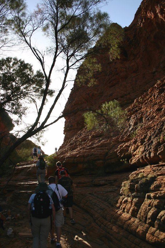 Outback-Trip: Kings Canyon Rim Walk IV