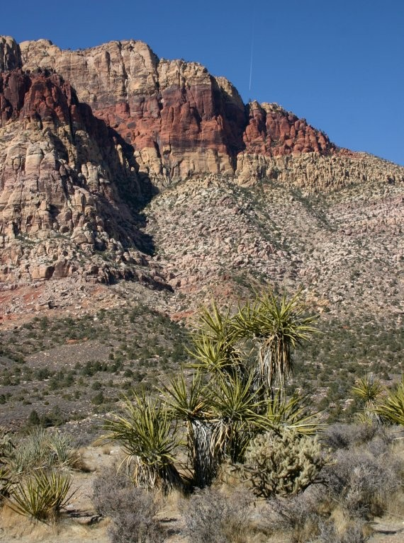 Red Rock Canyon XII