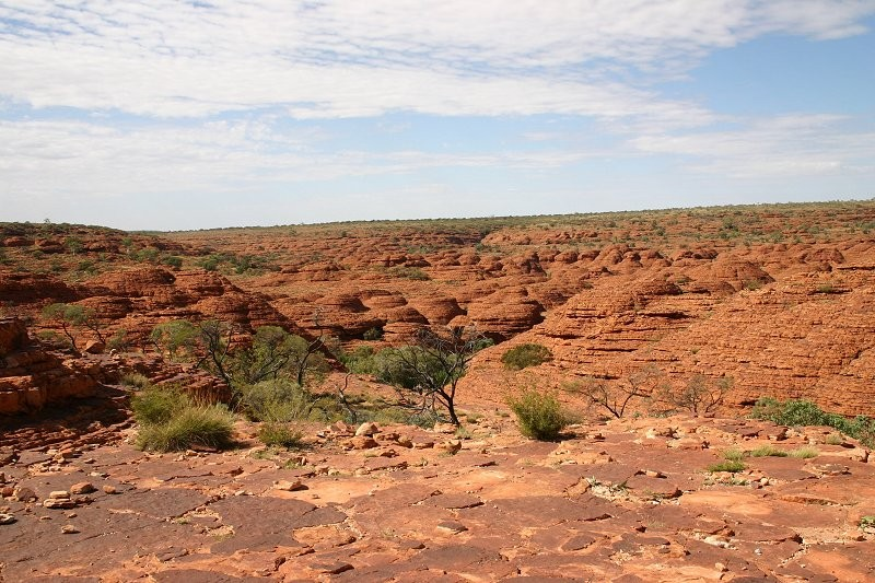Outback-Trip: Kings Canyon Rim Walk XIV