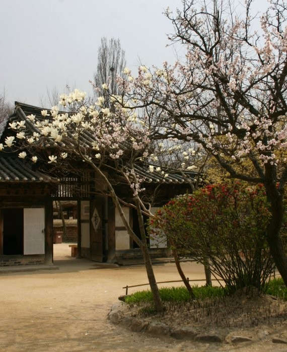 Suwon - Korean Folk Village VI