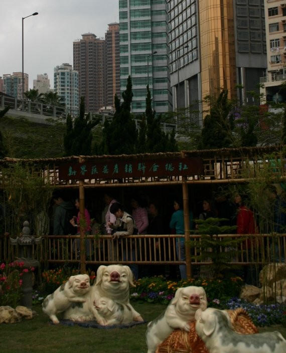 Hong Kong Flower Show I