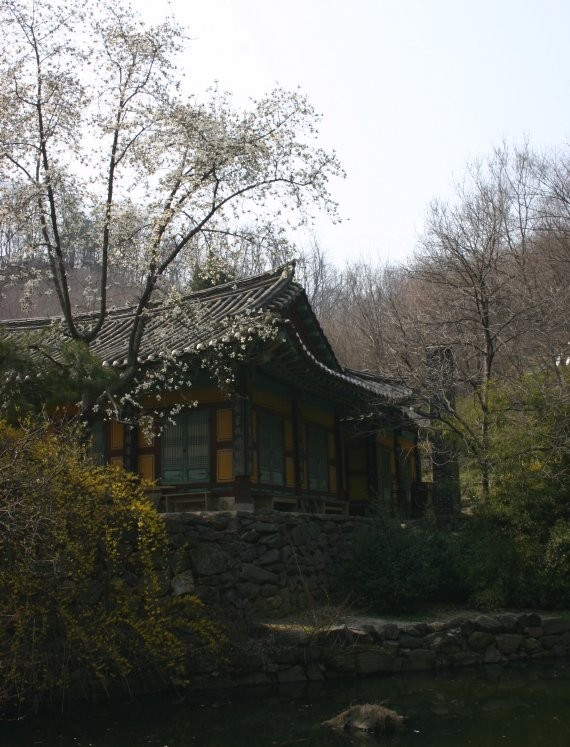 Suwon - Korean Folk Village XII