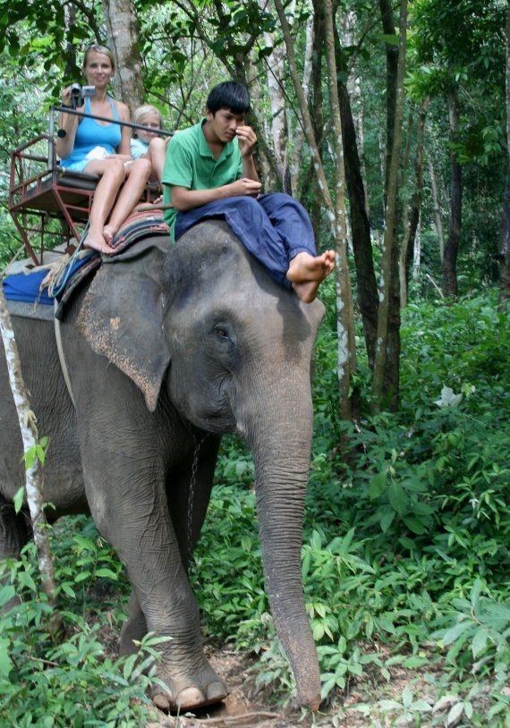 Koh Chang - Ban Kwan Elephant Camp III
